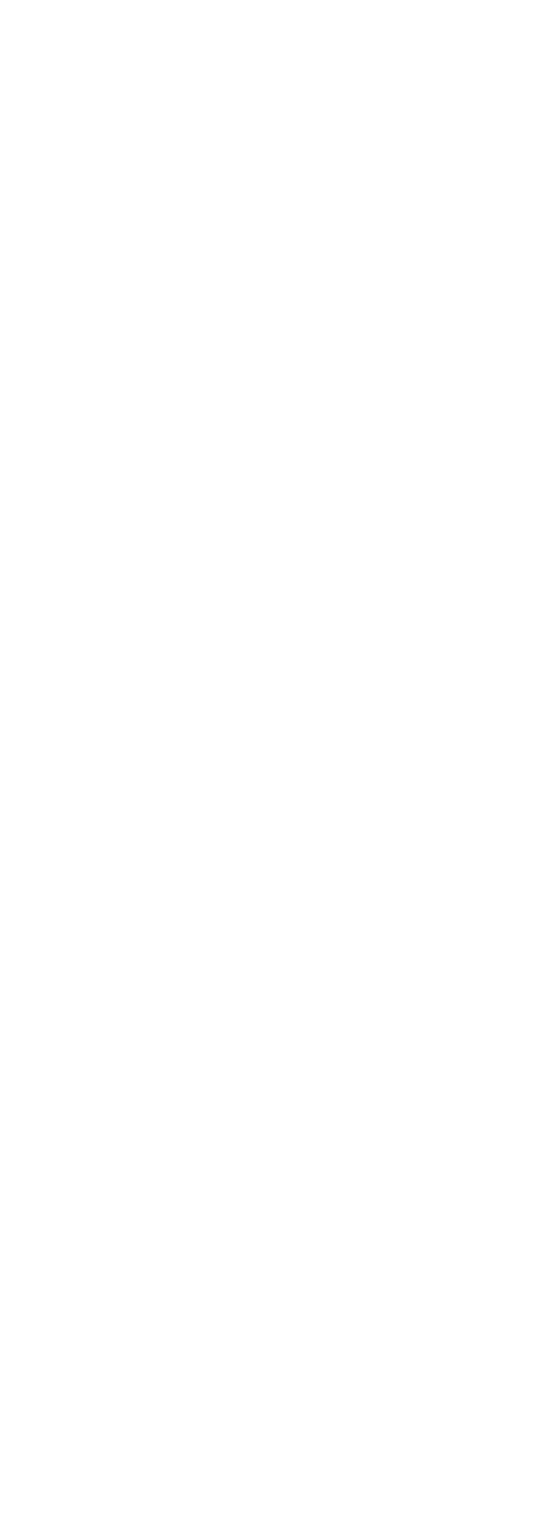 renovation-44