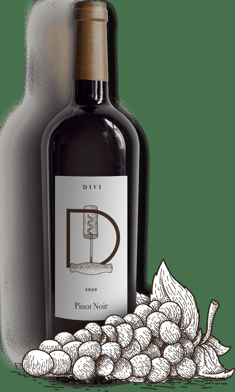 winery-35