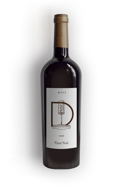 winery-49